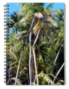 Shy Palms Spiral Notebook