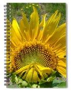 Shy Sunflower Spiral Notebook