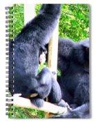 Siamang Gibbons Spiral Notebook