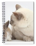 Siamese-cross Cat, Isaac, And Baby Spiral Notebook