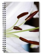 Side View Of A Lily 2 Spiral Notebook