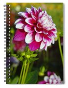 Sideview Spiral Notebook