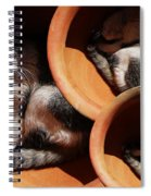 Siesta  4 Spiral Notebook