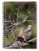Siesta Time - Mourning Dove Spiral Notebook