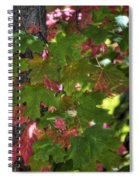 Signs Of Autumn  Spiral Notebook