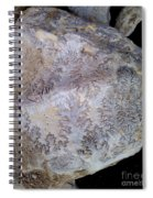 Signs Of The Ancient Seamstress Spiral Notebook