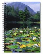 Silent Valley, Mourne Mountains Spiral Notebook