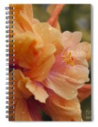 Silenzio Del Momento Spiral Notebook