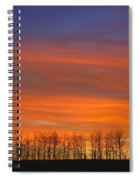 Silhouette Of Trees Against Sunset Spiral Notebook