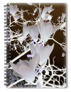 Silhouetted Blossoms Spiral Notebook