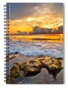Silky Rush Spiral Notebook