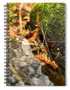Silky Water Spiral Notebook