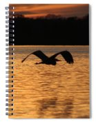 Silouette On The Lake Spiral Notebook