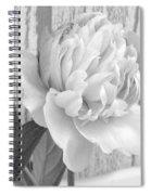 Silver Beauty Spiral Notebook