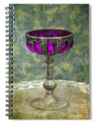 Silver Chalice With Jewels Spiral Notebook