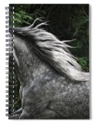Silver Dapple Spiral Notebook