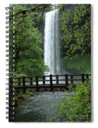 Silver Falls 2 In Oregon Spiral Notebook