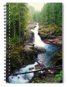 Silver Falls Full View  Spiral Notebook