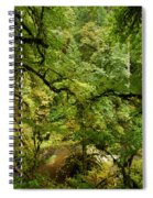 Silver Falls Rainforest Spiral Notebook