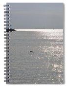 Silver Spiral Notebook