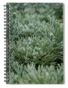 Silver Mound Dew Drenched Spiral Notebook