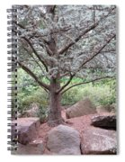 Silver On Trunk Spiral Notebook