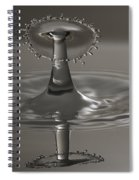 Silver Reflections Spiral Notebook