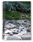 Silver Stream Spiral Notebook