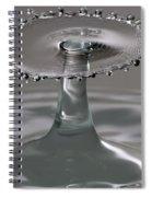 Silver Surfer Spiral Notebook