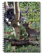 Silver Tabby And Wild Rabbit Spiral Notebook