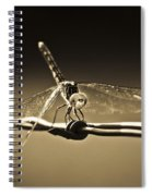 Silver Wings Spiral Notebook