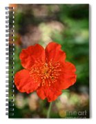 Simple Red Spiral Notebook