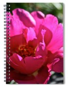 Simple Rose Spiral Notebook