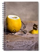 Simple Things 10 Spiral Notebook