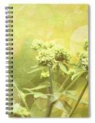 Simplicity Spiral Notebook