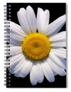 Simply A Daisy Spiral Notebook