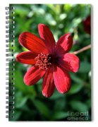 Simply Ruby  Spiral Notebook