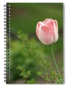 Simply Spring Spiral Notebook