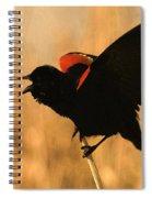 Singing At Sunset Spiral Notebook