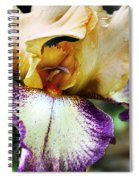 Singing In The Rain 1 Spiral Notebook