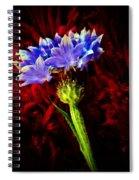 Single Bachelor  Spiral Notebook