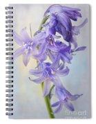 Single Bluebell Spiral Notebook