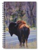 Single Buffalo In Yellowstone Np Spiral Notebook