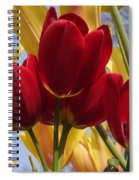 Single Late Red Georgette Spiral Notebook