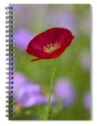 Single Red Poppy  Spiral Notebook