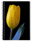 Single Yellow Tulip Spiral Notebook