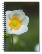 Sinle Dew Drenched Anemone Spiral Notebook