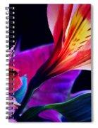 Sinless... Spiral Notebook