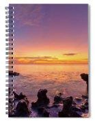 Siren Song Spiral Notebook