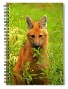 Sitting Wolf Spiral Notebook